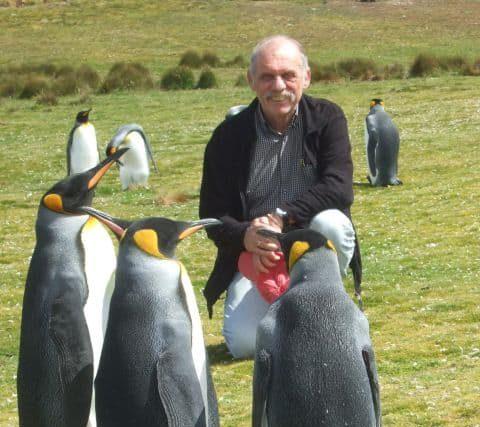 Wolfgang-Stoephasius Falkland