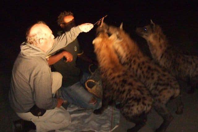 Hyänen füttern Harar